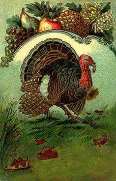 Vintage Turkey Postcard Thanksgiving Projects, Happy Thanksgiving Day, Vintage Thanksgiving, Vintage Fall, Vintage Halloween, Fall Halloween, Thanksgiving Turkey, Vintage Holiday, Vintage Cards