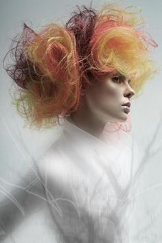 Tony Ricci NAHA 2010 Master hairstylist of the year winner