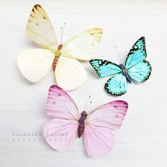 Susannah Tucker Photography: The butterflies - in white
