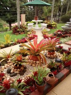 52 Fresh Front Yard and Backyard Landscaping Ideas for 2019 Tropical Landscaping, Outdoor Landscaping, Tropical Garden, Front Yard Landscaping, Outdoor Gardens, Landscaping Ideas, Backyard Patio, Natural Landscaping, Pebble Garden