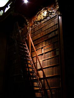 Prunksaal - national library, Vienna --------------------------------------------- I wonder what secrets these books hold. Beautiful Library, Dream Library, Library Books, Hogwarts Library, Vienna Library, Library Girl, Library Ladder, Thomas Carlyle, Home Libraries