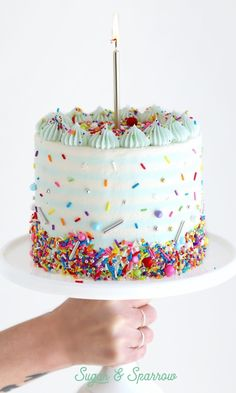 celebration cakes Sugar & Sparrow is ONE Pretty Cakes, Cute Cakes, Beautiful Cakes, Amazing Cakes, Food Cakes, Mini Cakes, Cupcake Cakes, Cake Blog, Cake Decorating Tutorials