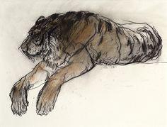 tijger jan van der kooi