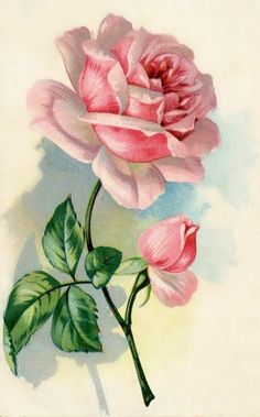 Romantic Rose Bud Flower Custom Anniversary Party Card