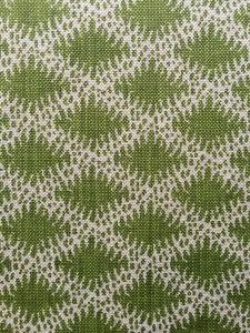 Lindi Diamond Green Fabric Houses, Cactus Plants, Shag Rug, Printing On Fabric, Colours, Blanket, Interior Design, Wallpaper, Prints