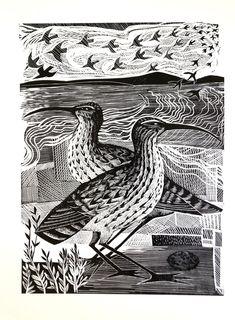 Two Curlews – Angela Harding Technical Illustration, Medical Illustration, Book Illustration, Illustrations, Lino Prints, Block Prints, David Hockney Art, Painting & Drawing, Encaustic Painting