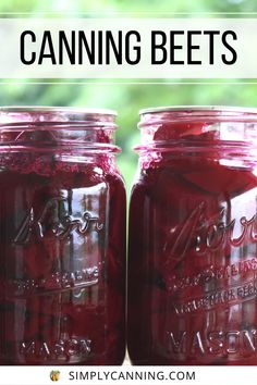 Canned beets - The process is fairly simple, but may take a little longer than other vegetables you're used to canning. Step by Step guide, with tips and tricks included at #SimplyCanning #CanningBeets #Beets Stewed Tomatoes, Canning Tomatoes, Corn Cob Jelly, Canning Beets, Pear Butter, Dandelion Jelly, Homemade Ketchup, Water Bath Canning, Plum Jam