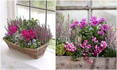 Floral Wreath, Wreaths, Flowers, Plants, Fall, Cupcake, Home Decor, Autumn, Flower Crowns