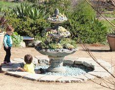 Succulent fountain--