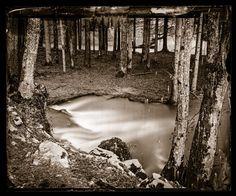 Borut Peterlin - from the 'Collodion Landscape' portfolio Monochrome, Landscape, Artwork, Photography, Scenery, Work Of Art, Photograph, Monochrome Painting, Auguste Rodin Artwork