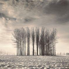 Beautiful Black and White Landscape Photography by Nilgun Kara: Turkey - My Modern Metropolis   from :http://www.mymodernmet.com/profiles/blogs/2100445:BlogPost:31307#