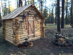 arizonanature:  I built a little log cabin in the woods. Porter Mountain, AZ