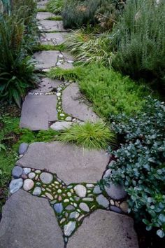 Garden path. Would love to create a labyrinth with a path like this.