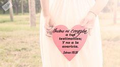 #DiarioBiblico #Devocionales #Versiculos - #Bible - #Dios #DevocionalDiario #MujeresdeInfluencia #MujeresenlaPalabra