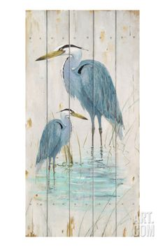 $164.99 w/out discount 16.5x33   Blue Heron Duo Giclee Print by Arnie Fisk at Art.com