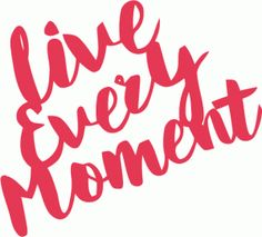 Silhouette Design Store - View Design #85693: live every moment handlettering brush script