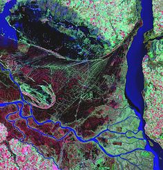 Credit: Landsat/USGS/NASA The Parana river delta is a huge forested marshland about 20 miles north-east of Buenos Aires, Argentina, that is ...