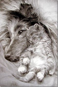 Lovely example of drawing fur Maria Zeldis