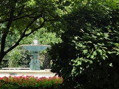 Adams Park in downtown Wheaton, Illinois