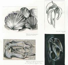 IGCSE Art and design drawings - Rhea Maheshwari