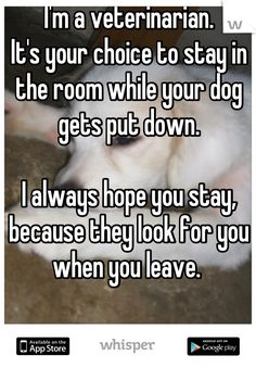 I'm a veterinarian.   It's your choice to stay in the room while your dog gets put down.      I always hope you stay, because they look for you when you leave.