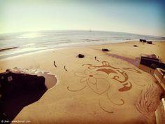 Land art, sand art, lumix, ibiscus, sand drawing, playa painting, turtle, gopro, dji phantom