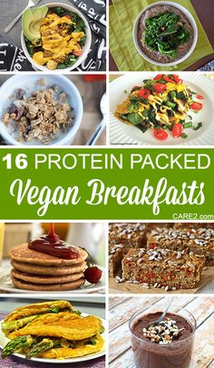 Eating plants doesn't have to mean starting the day with little or no protein. These vegan breakfast ideas pack a protein punch!