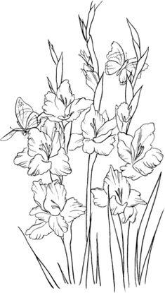Gladiolus 2 coloring page - Free Printable Coloring Pages Printable Flower Coloring Pages, Animal Coloring Pages, Free Coloring Pages, Coloring Sheets, Coloring Books, Gladioli, Flowers Draw, Drawing Flowers, Gladiolus Flower