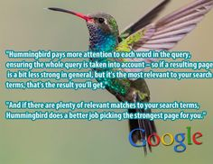A Search Geek's Thoughts on Google Hummingbird Great post on Hummingbird by David Harry
