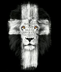 Image result for biblical lion quotes