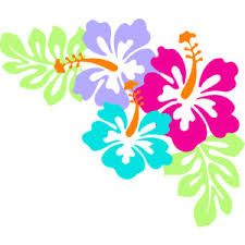 Image result for hibiscus clip art