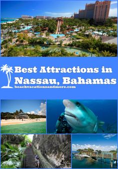 Best Nassau Attractions And Points of Interest In Top Nassau attractions & points of interest to visit on vacation – Blue Lagoon Island – [. Bahamas Honeymoon, Bahamas Vacation, Bahamas Cruise, Nassau Bahamas, Caribbean Cruise, Maldives Travel, Italy Vacation, Cruise Travel, Cruise Vacation