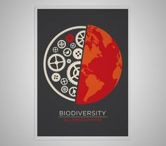 Pretty self-explanatory. Highlights the individuality as well. | poster, biodiversity