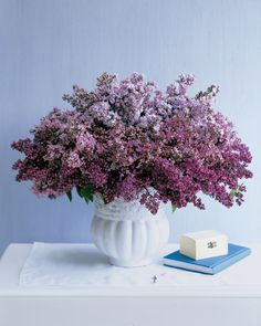 Lilac Bouquet - love these spring blooms Fresh Flowers, Purple Flowers, Beautiful Flowers, Flowers Vase, Centerpiece Flowers, Centerpiece Wedding, Hydrangea Flower, Small Flowers, Deco Floral