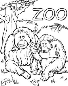 Zoo Animal Coloring Pages Are Always Fun Activity To Help Kids Enhance Their Skills Here Is A Collection Of 19 Amazing Free Printable
