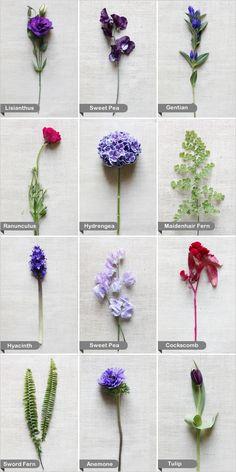 Wedding Budget Tip 16 Choose inseason flowers September and