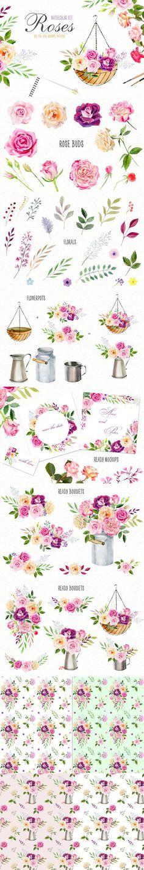 Watercolor roses & florals set. Watercolor Flowers