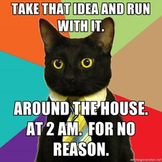 #BusinessCatTips: Inspiration can strike at the strangest times; be purrpared.