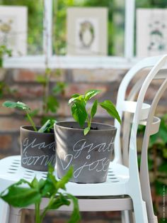 paint small pots with chalkboard paint, plant herbs, write on with chalk, place in kitchen