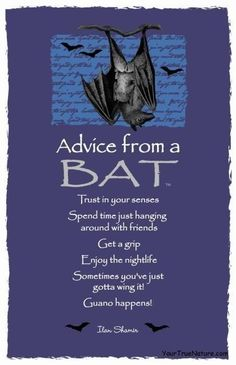 Advice from a Bat Spirit Totem Animals Spirit Animal Totem, Animal Spirit Guides, Wiccan, Magick, Witchcraft, Funny Life Lessons, Animal Medicine, Power Animal, Creatures Of The Night