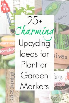 Garden markers or plant labels MIGHT not be something your garden needs, but they are definitely something your garden wants! And this amazing collection of upcycling ideas for plant tags is exactly the crafty inspiration you've been looking for. Herb Labels, Garden Labels, Plant Labels, Plant Markers, Garden Markers, Upcycled Crafts, Diy And Crafts, Repurposed, Garden Junk