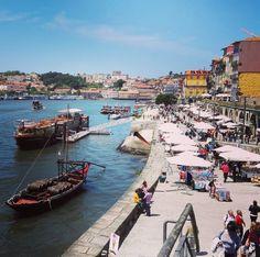 Oduševljen Portom ;) #porto #travel #sunnyday  #douro #portugal by matic_m