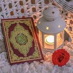 70 Best Islamic Dp Images In 2020 Islam Islamic Pictures Quran