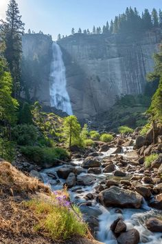 At the Yosemite National Park in California.