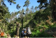 From Novice to Leader, Outdoors Club Backpacks Through Point Reyes! #sustainability #camping