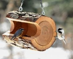 Creative Rustic Tree Trunk Hanging Bird Feeders Ideas