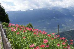 """Sonnenberg, Monte Sola. Wandelpad 10 richting Katharinaberg.Uitzicht vanaf """"Dickhof"""" 1706m."""