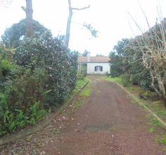 Estadias para férias ( Açores , Portugal ) : Férias em São Miguel , Fenais da Luz Quartos para turismo