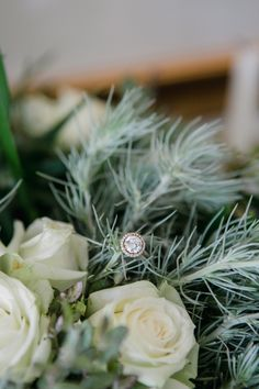 Walkersons Hotel & Spa - Dust and Dreams Photography Bride Groom, Wedding Bride, Wedding Engagement, Wedding Venues, Wedding Day, Wedding Rings, Romantic Photography, Dream Photography, Wedding Photography