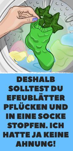 Bewährter Waschmaschinentrick: Efeublätter!